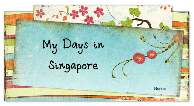 My Days in Singapore