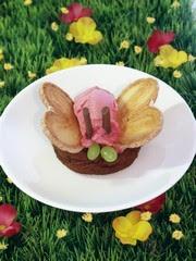 Διακόσμηση παγωτού-πεταλούδα