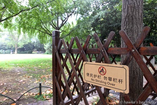 No Striding Over, Chinglish on a sign protecting a tree in a public park photograph