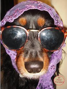 Spy Molly!
