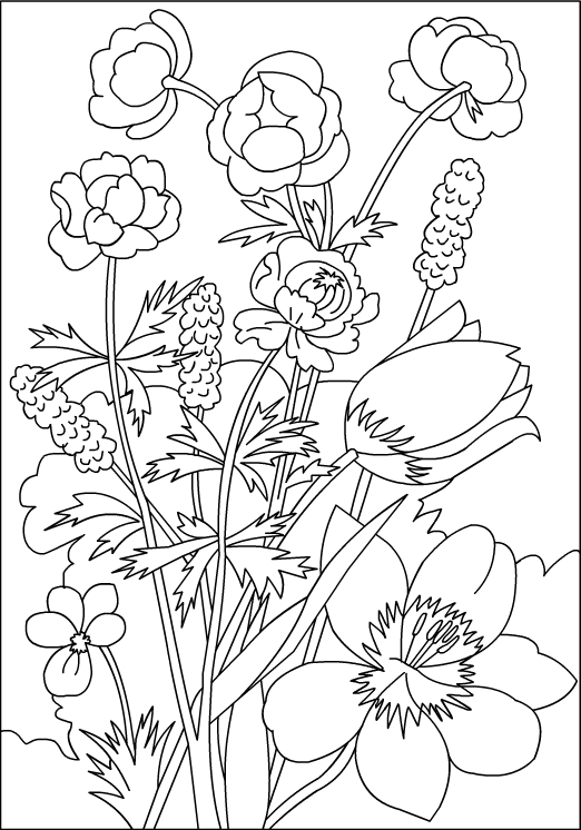 Flower Coloring Pages by Numbers For Kids