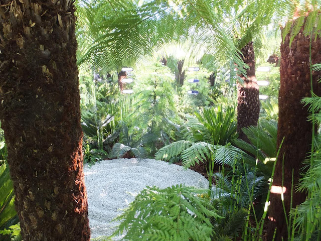 The SMART Vision Garden: Having the Vision to See Beyond Mental Illness