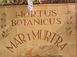 BOTÀNIC MARIMURTRA