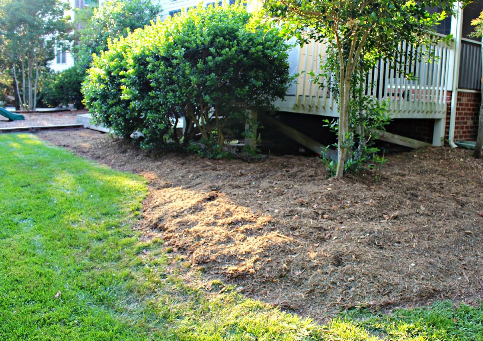 carolina on my mind backyardigans part 21 more mulch