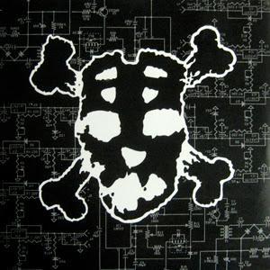 Slapshot считаются одними из отцов или пра-отцов подстиля под названием hatecore, хардкора с негативными текстами. Также группа подарила хейткору один из его символов - олдкульную хоккейную маску, ака маску Джейсона.