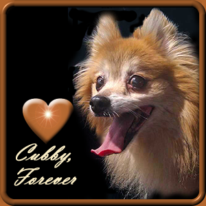 Rest in Peace Cubby