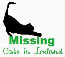 Missing Cats in Ireland