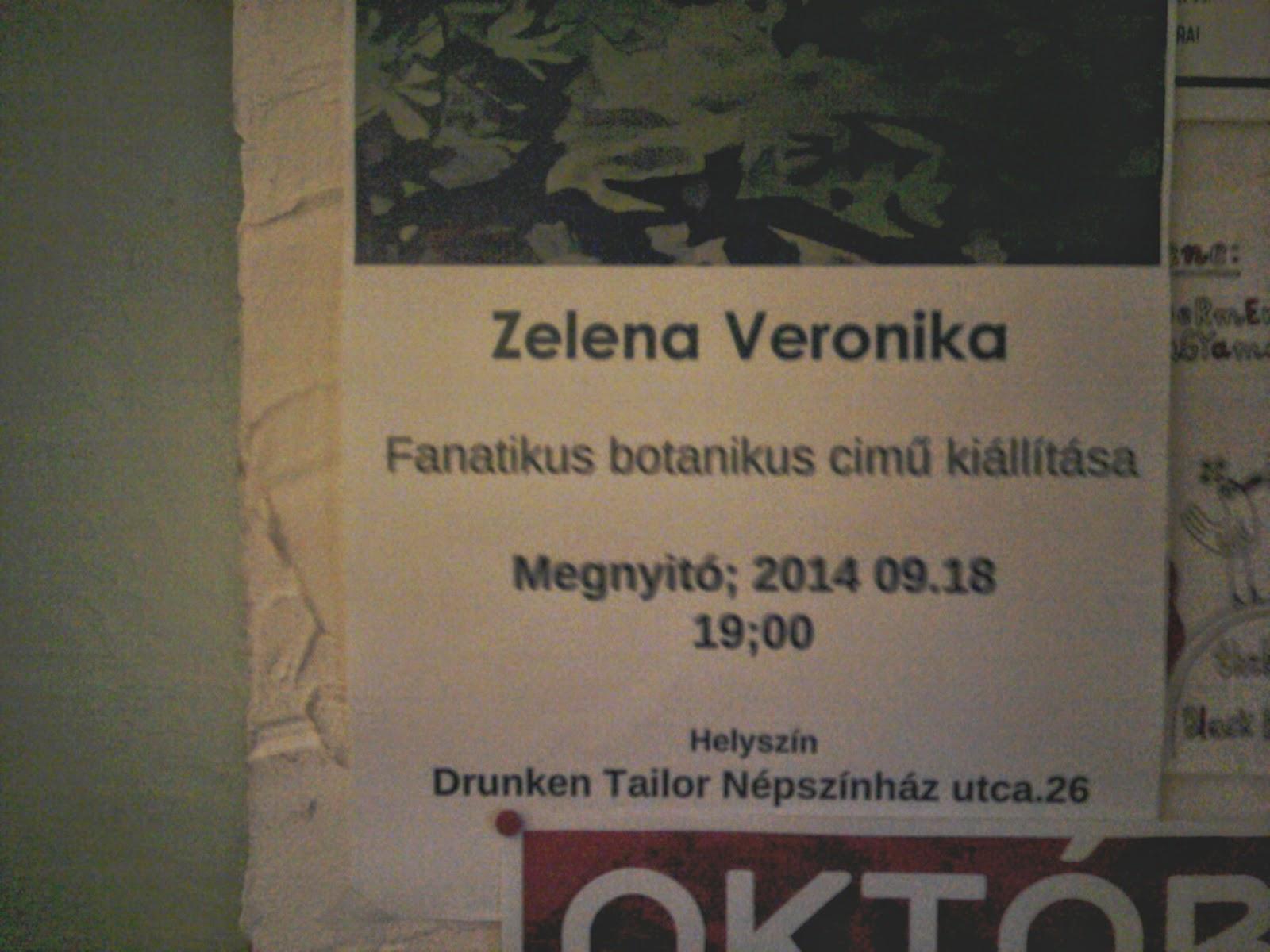 Zelena Veronika, Drunken Tailor, Részeg Szabó, Budapest, programajánló, Népszínház utca, VIII. kerület, kocsma,