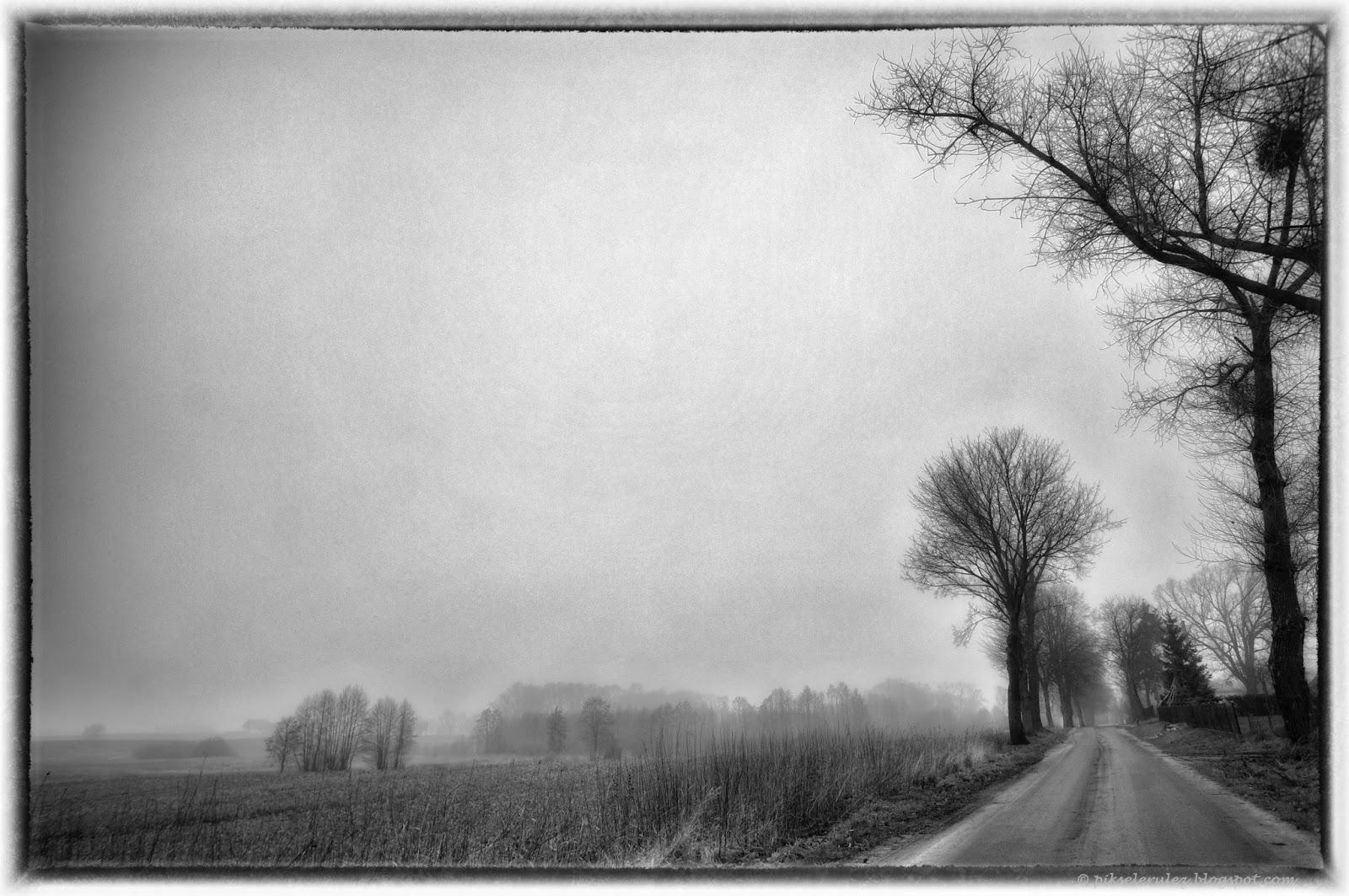 lotyń, bory tucholskie, droga, wieś