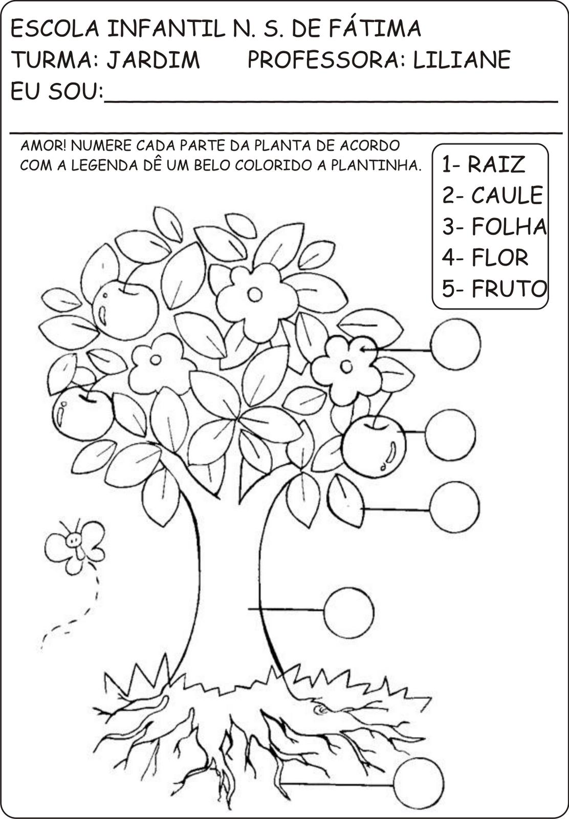 Amado Atividades primavera e plantas - A Arte de Ensinar e Aprender FJ78