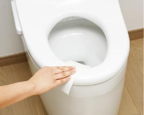Comment nettoyer les toilettes for Comment nettoyer les toilettes
