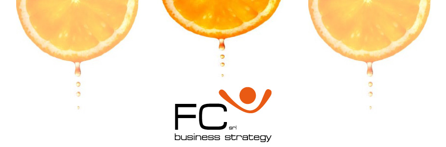 FC SRL BUSINESS STRATEGY