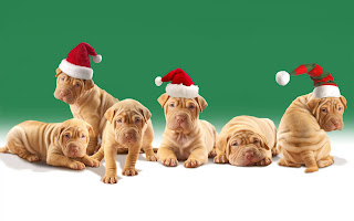 Free Download Dog Christmas Party Wallpaper