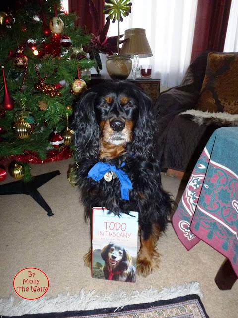 Molly The Wally & More Xmas Presents 11 !