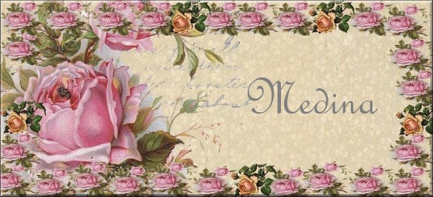medina sin blogg