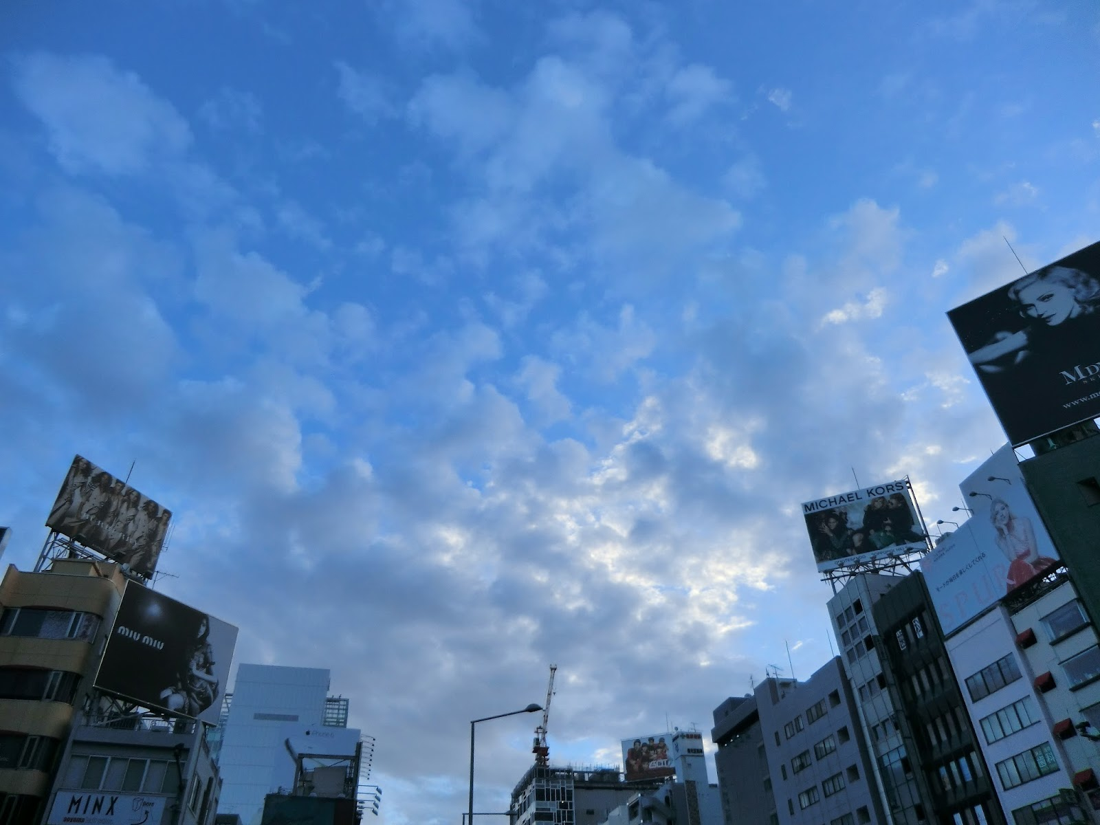 空,雲,表参道〈著作権フリー画像〉Free Stock Photos