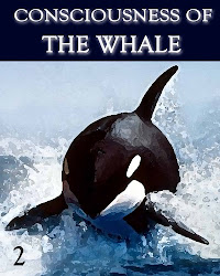 Consciousness of the Whale - Part 2