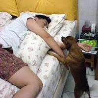 5 Bahaya Bangun Tidur Terlalu Siang [lensaglobe.blogspot.com]