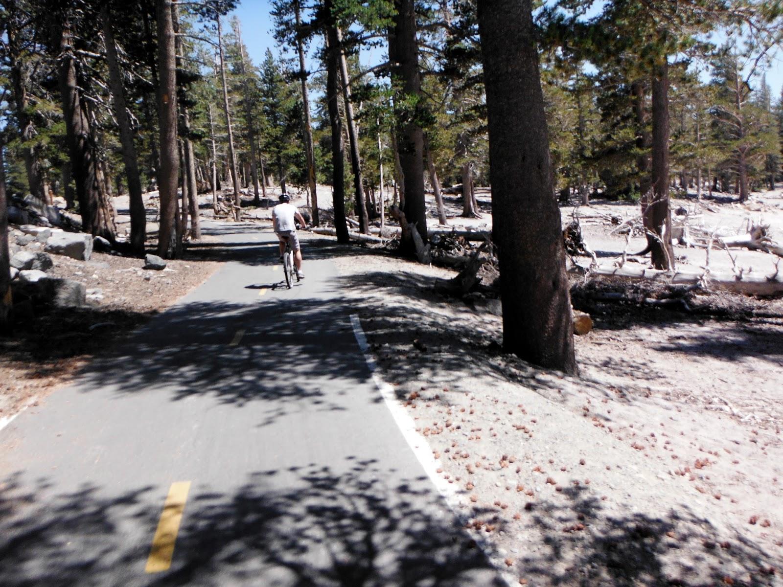 Ciclismo de Montaña - Mountain Bike Holidays, Consulta - Noticias en