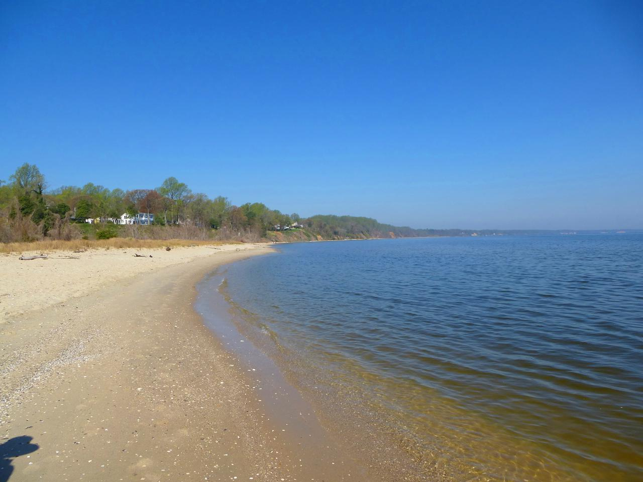 A View from the Beach: May Day Beach Report
