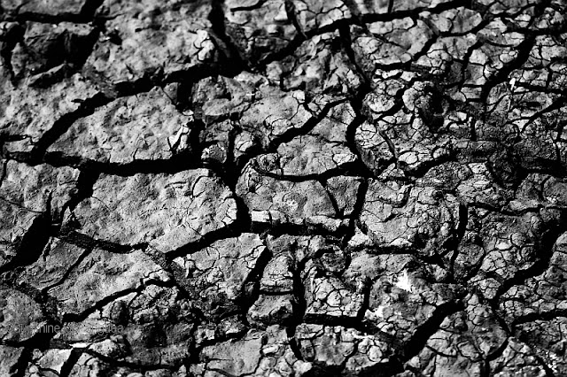 mudcracks black and white photography