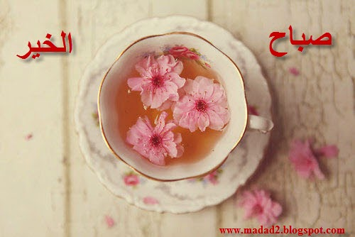 www.madad2.blogspot.com
