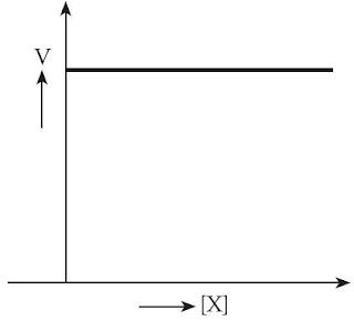Grafik Reaksi Orde 0 Nol