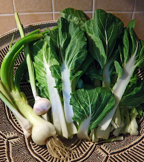 Basket of Green Garlic, Leeks, Bok Choy