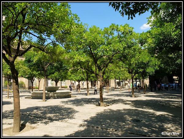 Séville Cathédrale Giralda Cour des Orangers