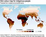 MAPA MUNDIAL BASADO EN EL COLOR DE LA PIEL