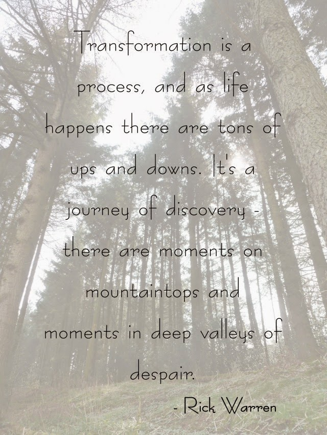 Transformation is a process, and as life happens there are tons of ups and downs. It's a journey of discovery - there are moments on mountaintops and moments in deep valleys of despair. - rick warren quote