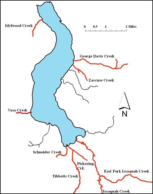 The fish files lake sammamish kokanee conservation for Lake sammamish fishing