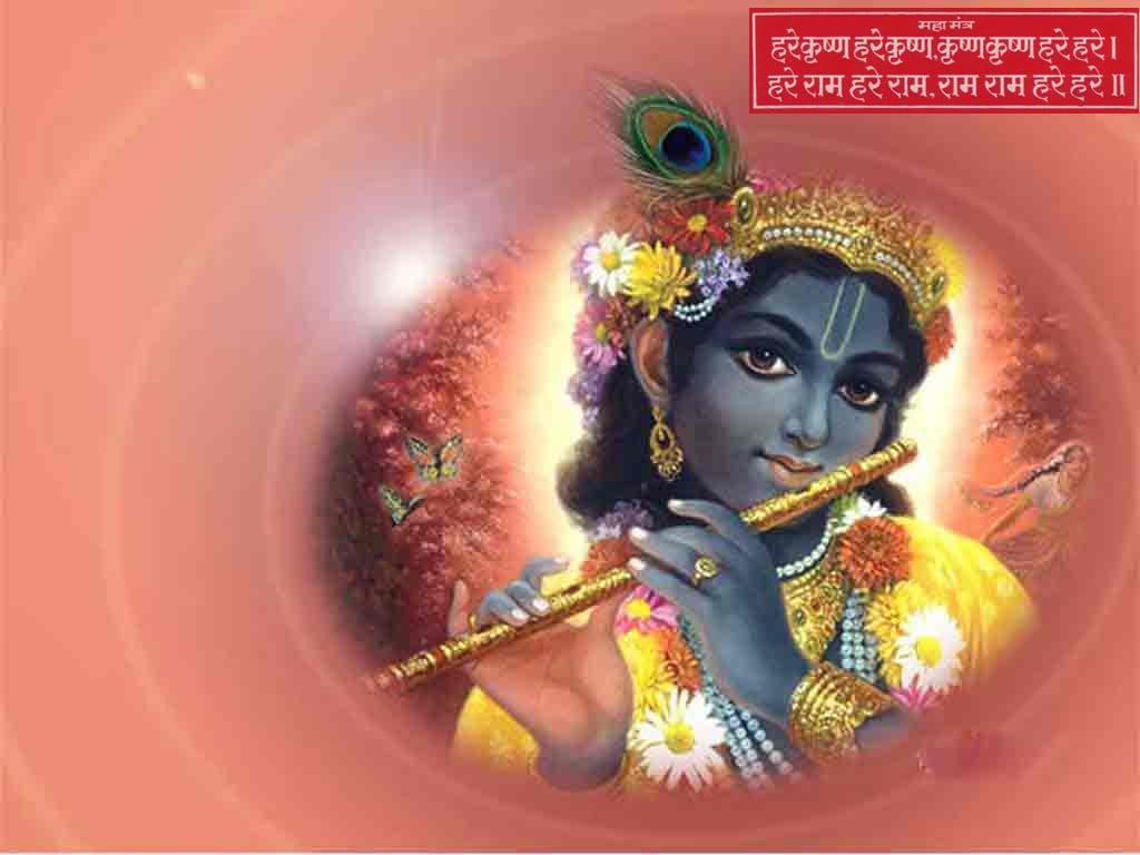 god krishna wallpapers