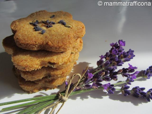 biscotti lavanda