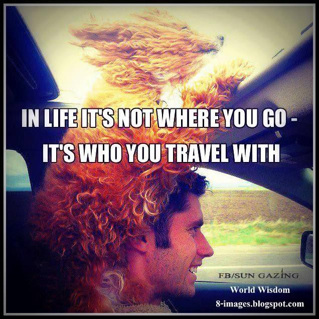 life, travel,