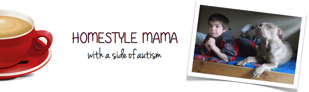      Homestyle Mama (with a side of autism)