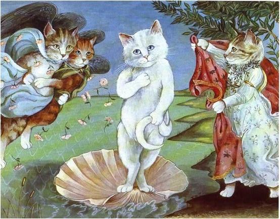 S Herbert Cat Gallery