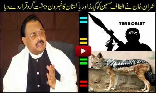 Altaf Hussain is a Jackal & No 1 Terrorist of Pakistan said by Imran Khan