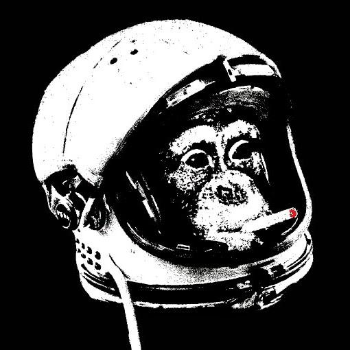 Maimuta Spatiala