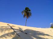 Dunas...Praia!