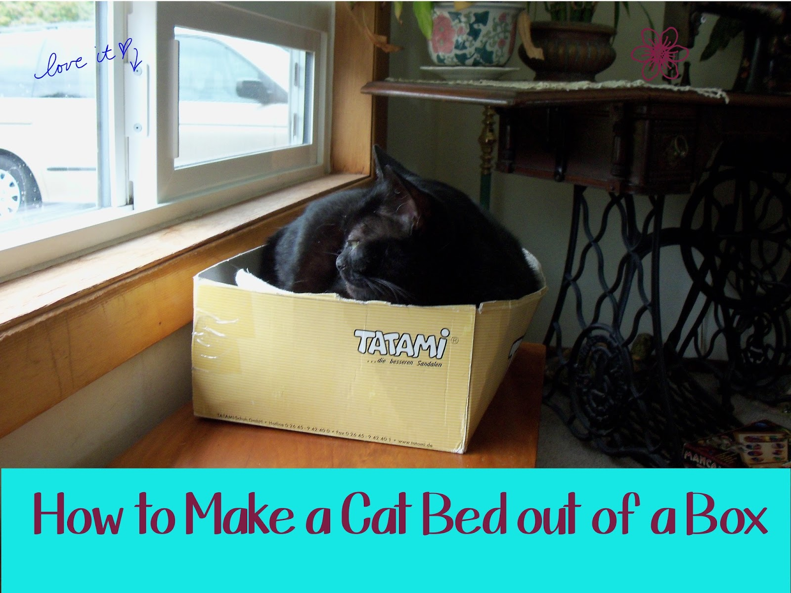 Homeschool smarts how to make a cat bed out of a box for How to make a cat toy out of a box
