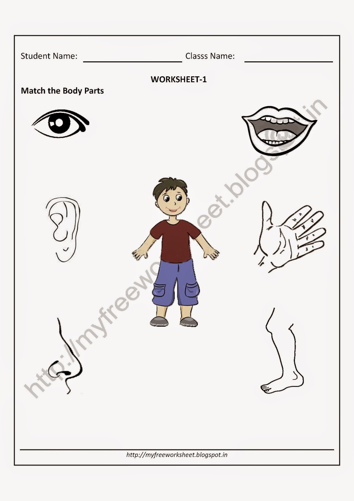 worksheet Body Part Matching Worksheet my free printable worksheet google
