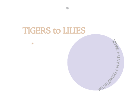 TIGERS TO LILIES