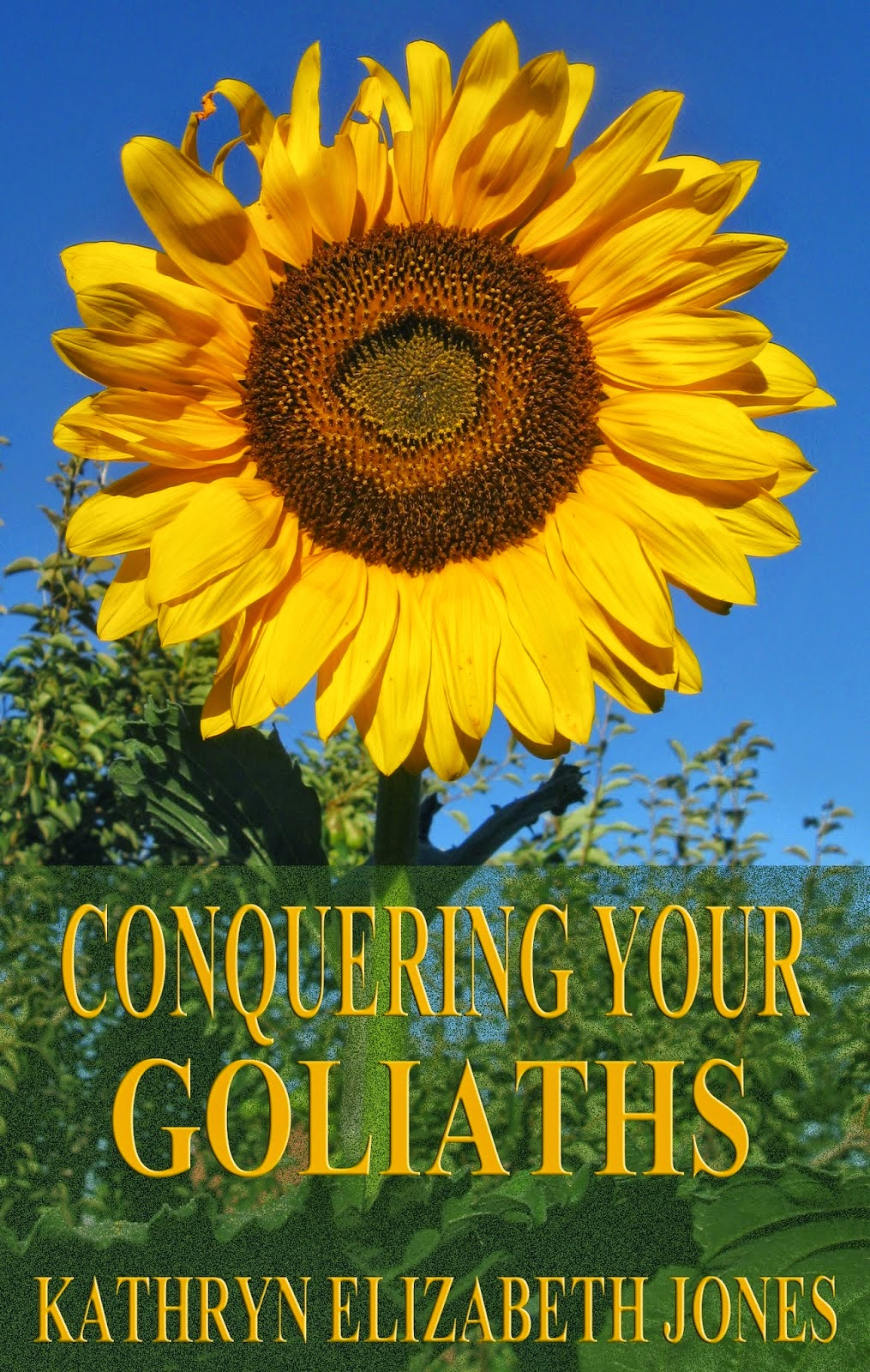 http://www.amazon.com/Conquering-Your-Goliaths-Parable-Stones-ebook/dp/B0071BFG1O/ref=tmm_kin_swatch_0?_encoding=UTF8&sr=1-3&qid=1423761110