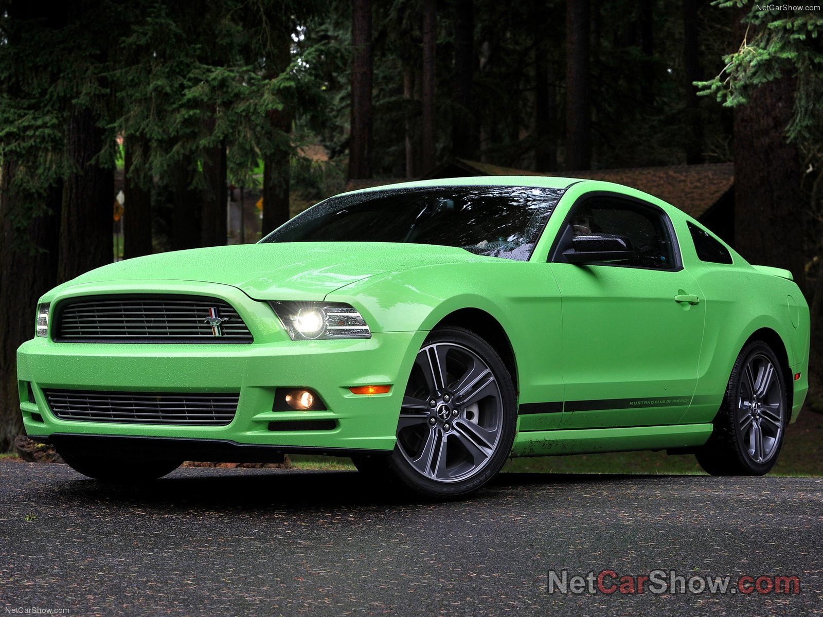 shelby mustangs 20 pictures of ford mustang 2013. Black Bedroom Furniture Sets. Home Design Ideas