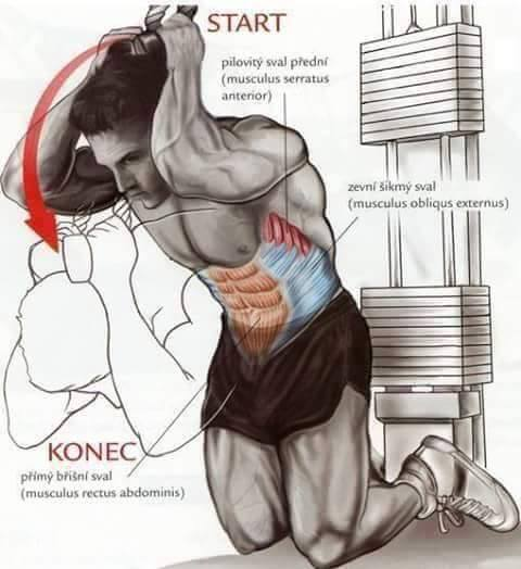 Bodybuilding weight training Exercises step by step instructions 4