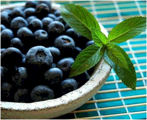 Manfaat Blueberry Untuk Kesehatan Organ Tubuh