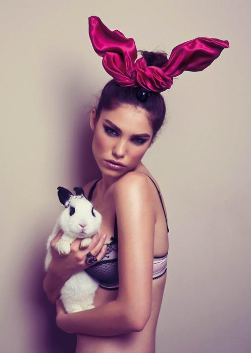 Erotic rabbit australia