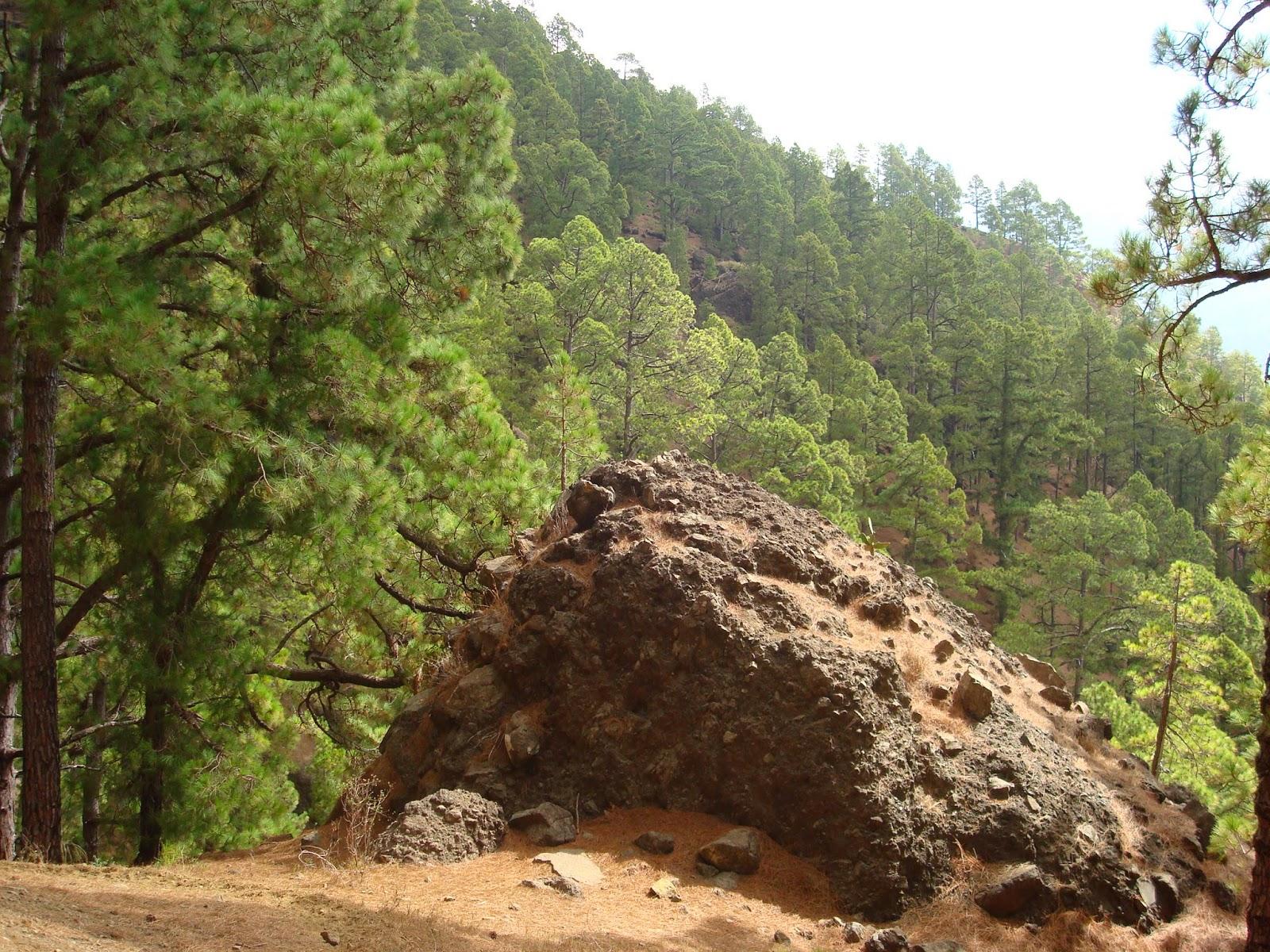 Deporte y senderismo la palma caldera taburiente for Piscinas naturales grazalema