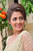 Madhu Shalini sizzling in saree-thumbnail-17